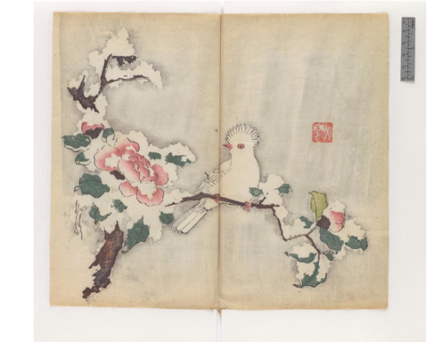 'Manual of Calligraphy and Painting' ('Shi zhu zhai shu hua pu') (Chinese, 1633), polychrome xylographic print (courtesy Cambridge University Library)